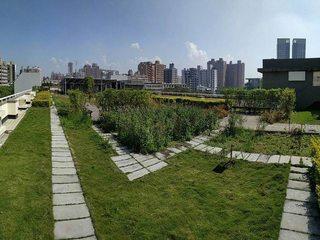 蝶舞翩翩芳草中 高市府推廣建築物立體綠化
