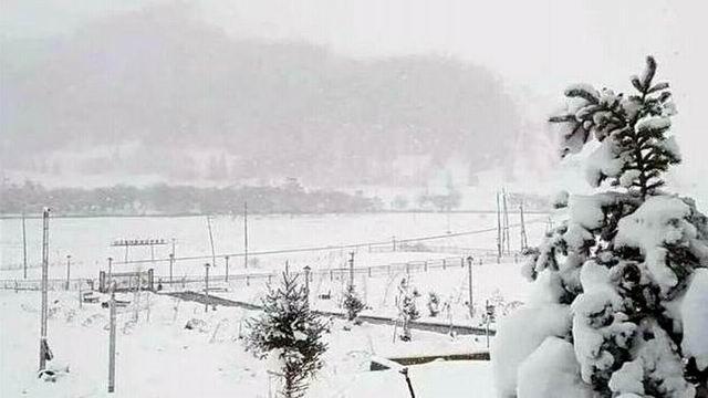 大陸華北降大雪 內蒙古商都降雪達6.3毫米