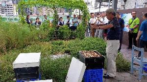 城市養蜂 蚓菜共生 綠屋頂講座壓軸登場