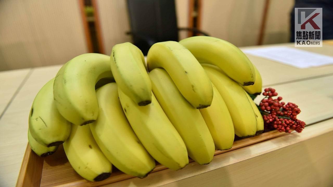 高雄農產前進日本 第一批出貨共9.6公噸香蕉