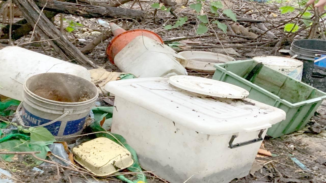 衛生局:市民應主動清除孳生源  依法嚴查舉發
