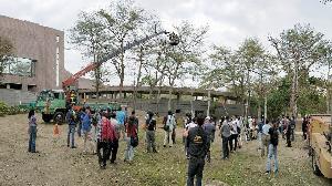 「景觀樹木修剪技術人員訓練班」開始接受報名